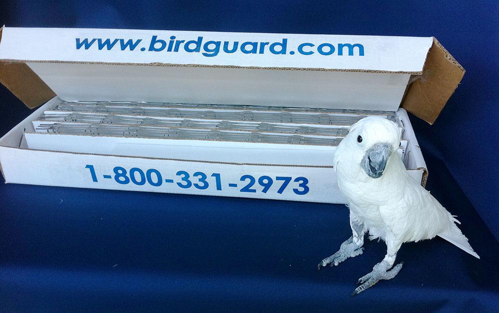 BirdGuard DIY Kit