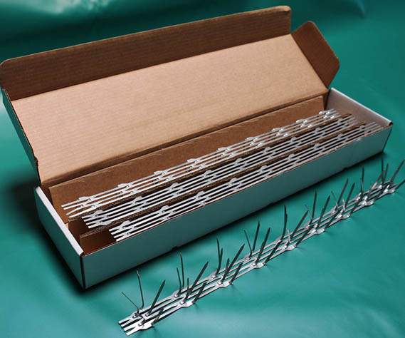 Angled box of bird spikes